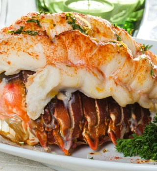 Main Lobster Tail